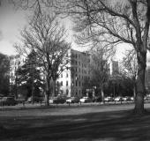 Christchurch hospital from Hagley park (8490/8507).
